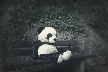 Panda soft toy on a bench - DWIF00855