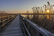 Germany, Bad Buchau, Lake Feder, wooden boardwalk at sunset - KEBF00557