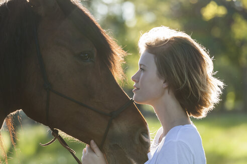 Profiles of young woman and horse at backlight - TCF05422
