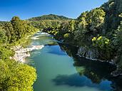 New Zealand, South Island, Buller River, Buller Gorge - STSF01212