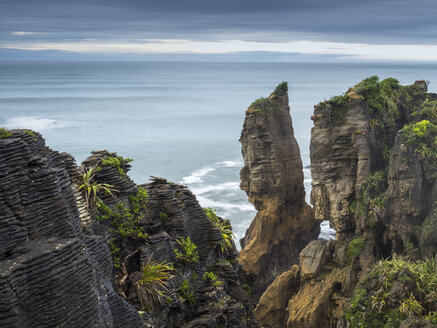 New Zealand, South Island, Westcoast, Tauranga Bay, Pancake Rocks coast - STSF01218