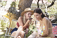 Two young women in garden sharing cell phone - WESTF23233