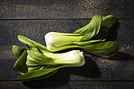 Shanghai Pak Choi on dark wood - MAEF12231
