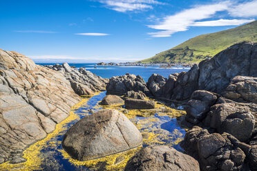 New Zealand, South Island, Southern Scenic Route, Orepuki, Cosy Nook Beach - STSF01240