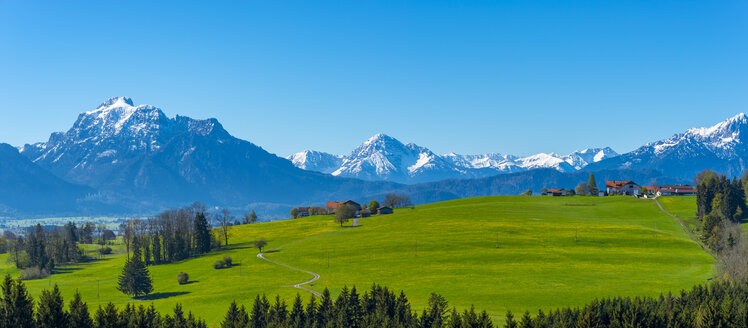Germany, Bavaria, Alpine foothills near Rosshaupten with Neuschwanstein Castle and Saeuling in background - WGF01089