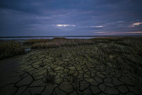 Germany, Norden, North Sea landscape - FDF00226