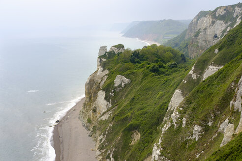 UK, Beer, Hooken Cliffs - SIEF07429