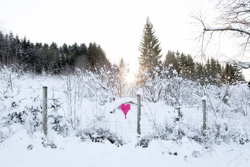Woven heart at fence in winter landscape - PSTF00044