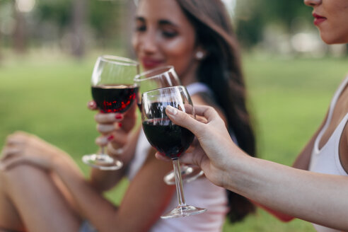 Friends in a park clinking red wine glasses - JPF00220
