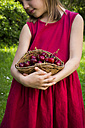 Little girl wearing red summer dress holding basket of cherries, partial view - LVF06178