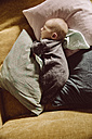 Newborn baby lying and napping on couch between pillows - MFF03672