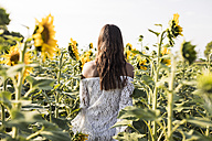 Woman in a sunflower field - MAUF01071