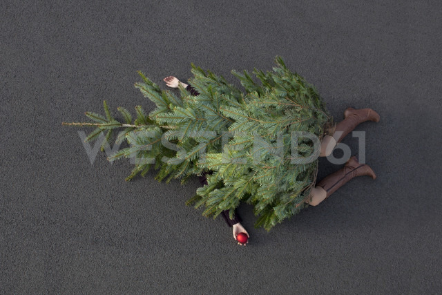Woman lying buried under Christmas tree - PSTF00057