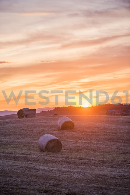 Italy, Tuscany, Val d'Orcia, straw bales on field at sunset - LOMF00592