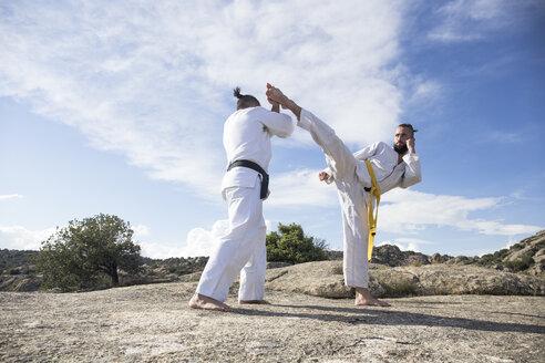 Man doing a high kick during a martial arts combat - ABZF02119