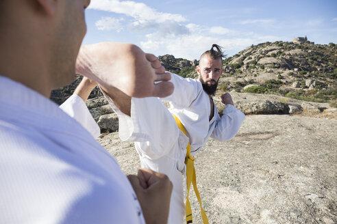 Man doing a high kick during a martial arts combat - ABZF02122