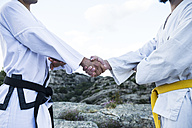 Men shaking hands during a martial arts training - ABZF02137