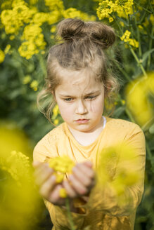 Girl examining plant in rape field - MOEF00012