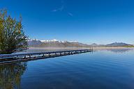 Germany, Bavaria, Allgaeu, Lake Hopfensee in the morning - WGF01096
