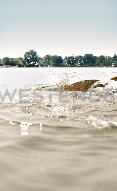 Oar in water - BFRF01800
