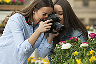 Girlfriends photographing potted plants at flower stall - CHAF01887