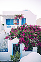 Greece, Santorini, Oia, beautiful Greek house with a pink bougainvillea - GEMF01728