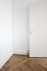 Inddor plant behind door on wooden floor - KNSF01851