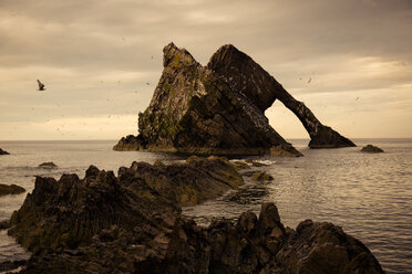 UK, Scotland, Bow Fiddle Rock - FCF01212