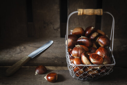Sweet chestnuts in wire basket - EVGF03239