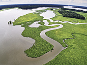 USA, Virginia, Marshes of the Chickahominy River - BCDF00290