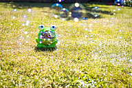 Toy frog on lawn blowing bubbles - SMAF00757