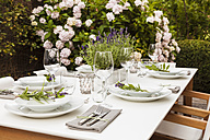 Festive laid table in the garden - WDF04051