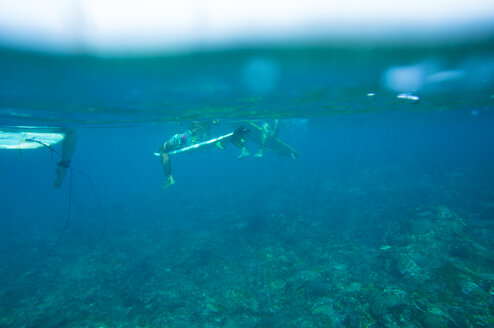 Underwater shot of three surfers sitting on their surfboards - FAF00073