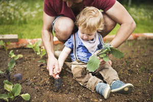 Father with his little son in the garden planting seedlings - HAPF02004