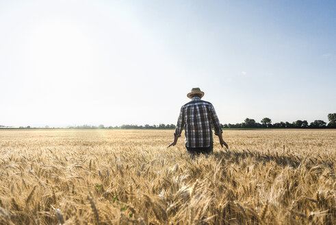 Back view of senior farmer standing in wheat field - UUF11164
