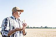 Senior farmer in a field examining ears - UUF11188