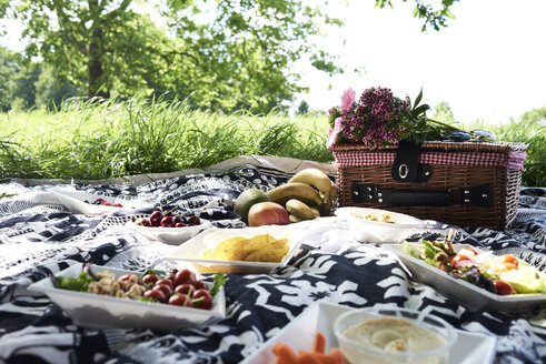 Healthy picnic in a park in summer - IGGF00028