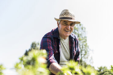 Portrait of smiling senior man in garden - UUF11307