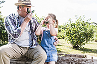 Playful grandfather and granddaughter in the garden - UUF11322