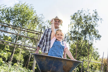Grandfather pushing wheelbarrow with granddaughter in the garden - UUF11325