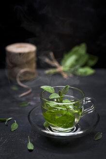 Tea glass of steaming sage tea with sage leaves - CZF00293