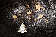 Christmas Cookies and icing sugar on baking tray - SBDF03272