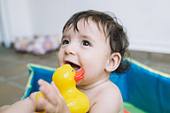 Portrait of baby girl in a pool playing with rubber duck - GEMF01754