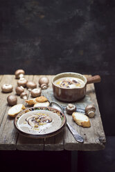 Creme of mushroom soup with chick peas - CZF00298