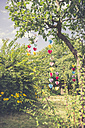Heart-shaped garlands made of paper hanging in garden - CMF00708