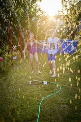 Brother and sister having fun with lawn sprinkler in the garden - SARF03350