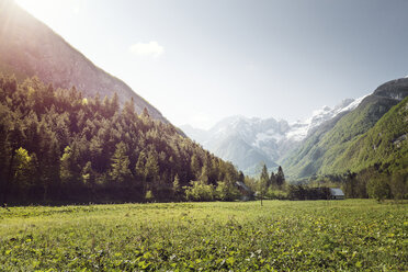 Slovenia, Bovec, landscape near Soca river - BMAF00333