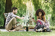 Couple with dog having a picnic in a park drinking red wine - ALBF00162
