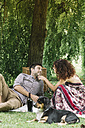 Couple with dog having a picnic in a park - ALBF00165