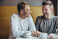 Gay couple enjoying their time together in cafe - MFF03891